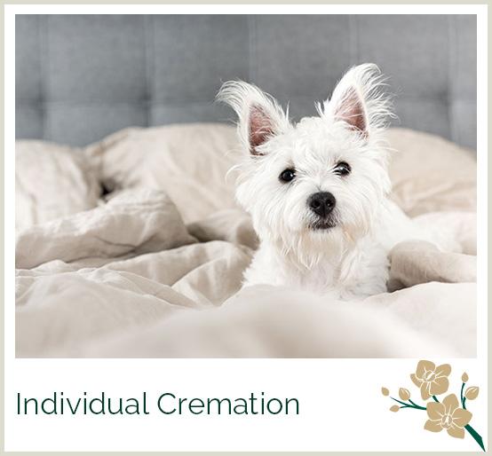 Greenacres pet crematorium for Sound proof dog bed